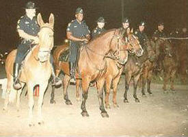 DALLAS POLICE MOUNTED PATROL