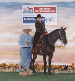 Sue shows her Quarter Horse in Amateur Trail, Reining, Western Riding, Horsemanship and Showmanship.