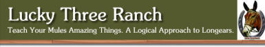 Lucky Three Ranch - Everything you need to understand and train your mule or donkey.